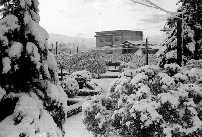 Nieve en la plaza y edificio de fondo